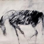 Cheval - 1998 - Fusain sur papier préparé à l'acrylique sur médium à base de sable - 50 x 65 cm